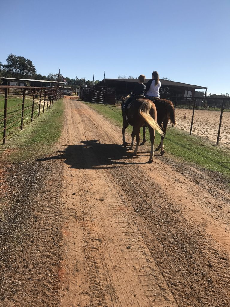Two horses with two riders on a dirt road
