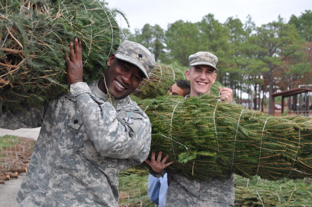 military christmas tree free trees for troops