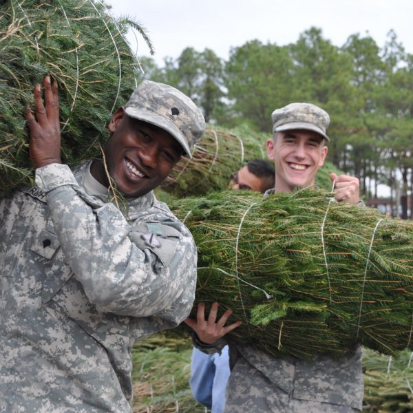 Trees for Troops Brings Christmas Spirit to Military Families