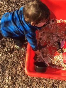 pumpkin seed sensory bin
